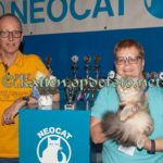 nct-hoevelaken-25-september-2016-072