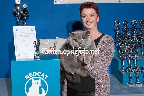 sized_Neocat Houten 20170129-029