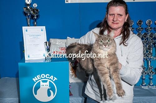 sized_Neocat Houten 20170129-031