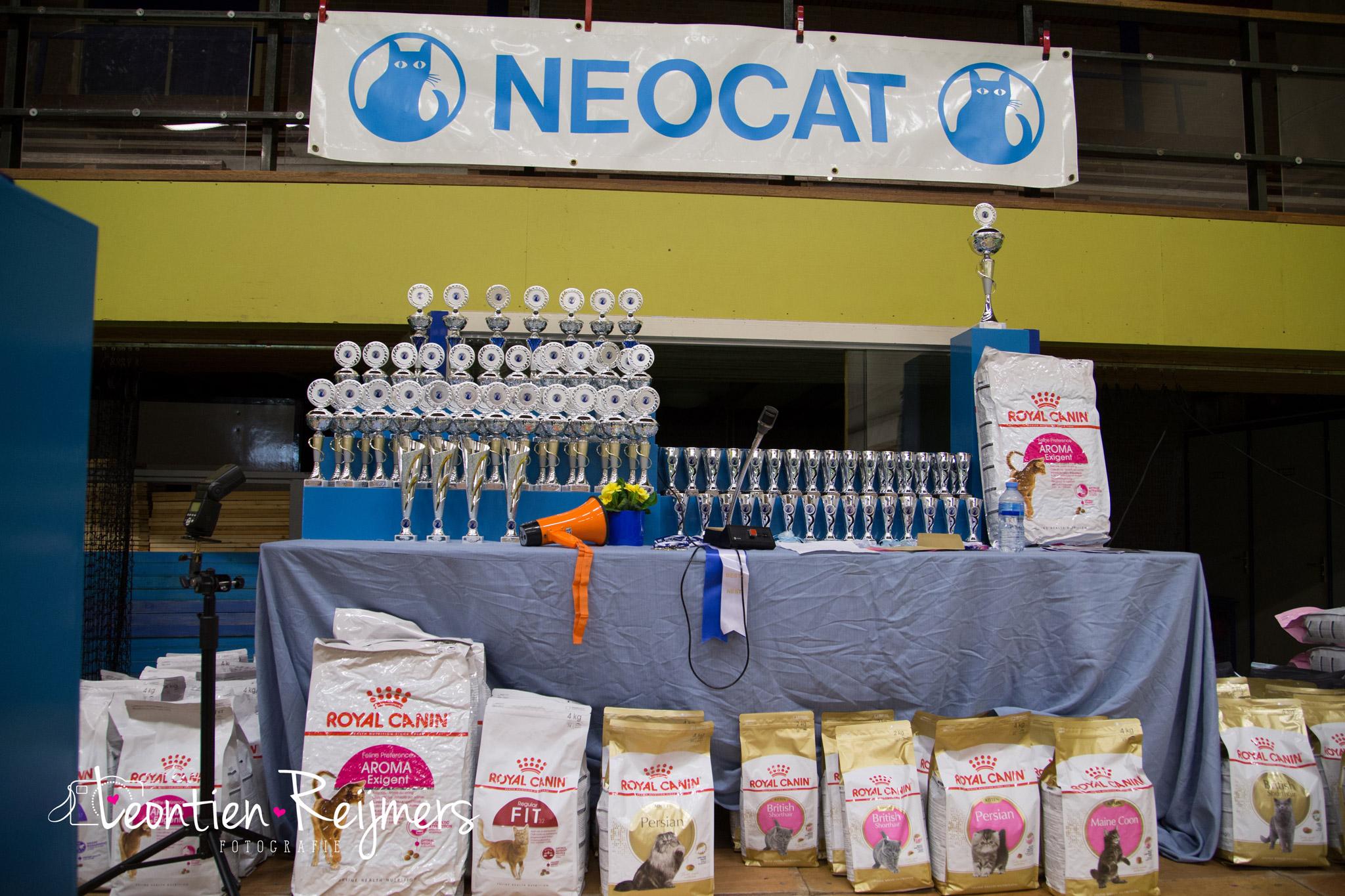 2017-04-09_Neocat004