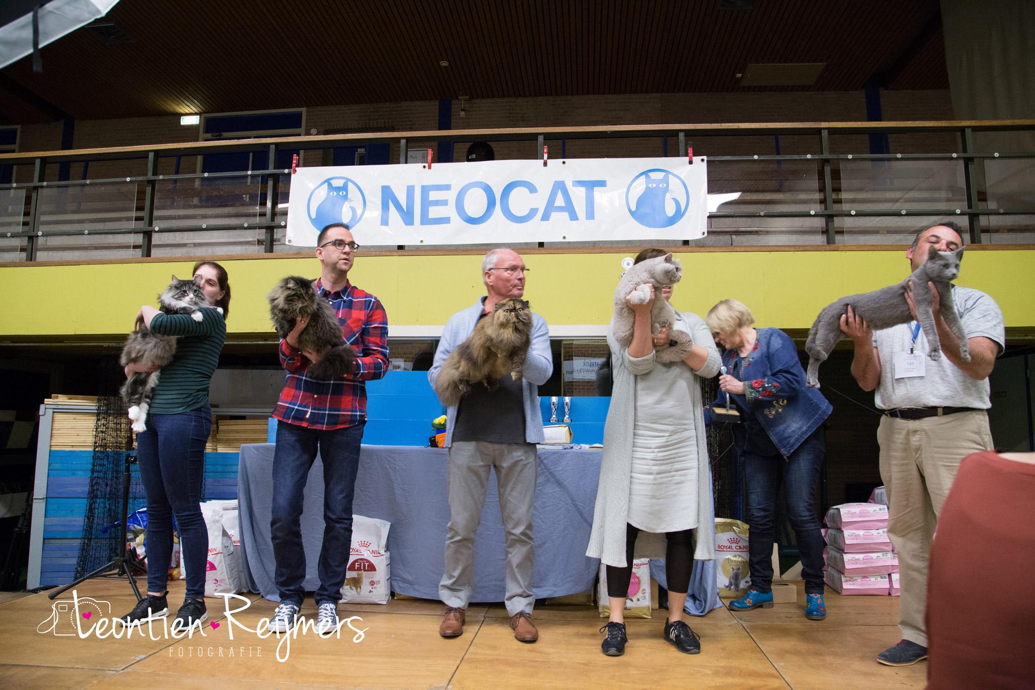 2017-04-09_Neocat233