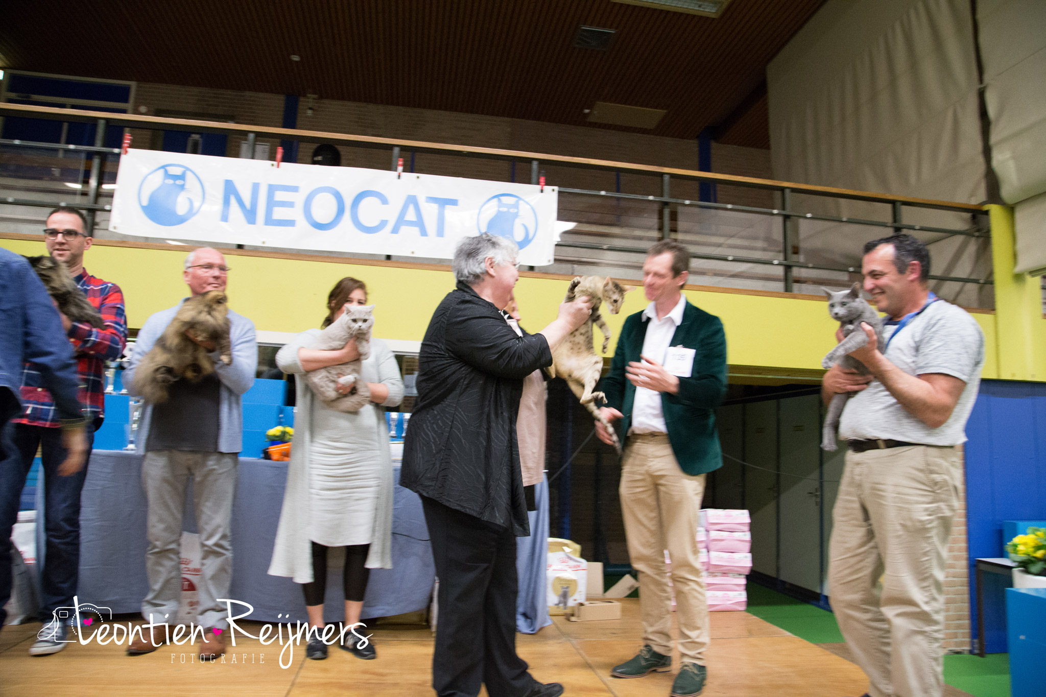 2017-04-09_Neocat243