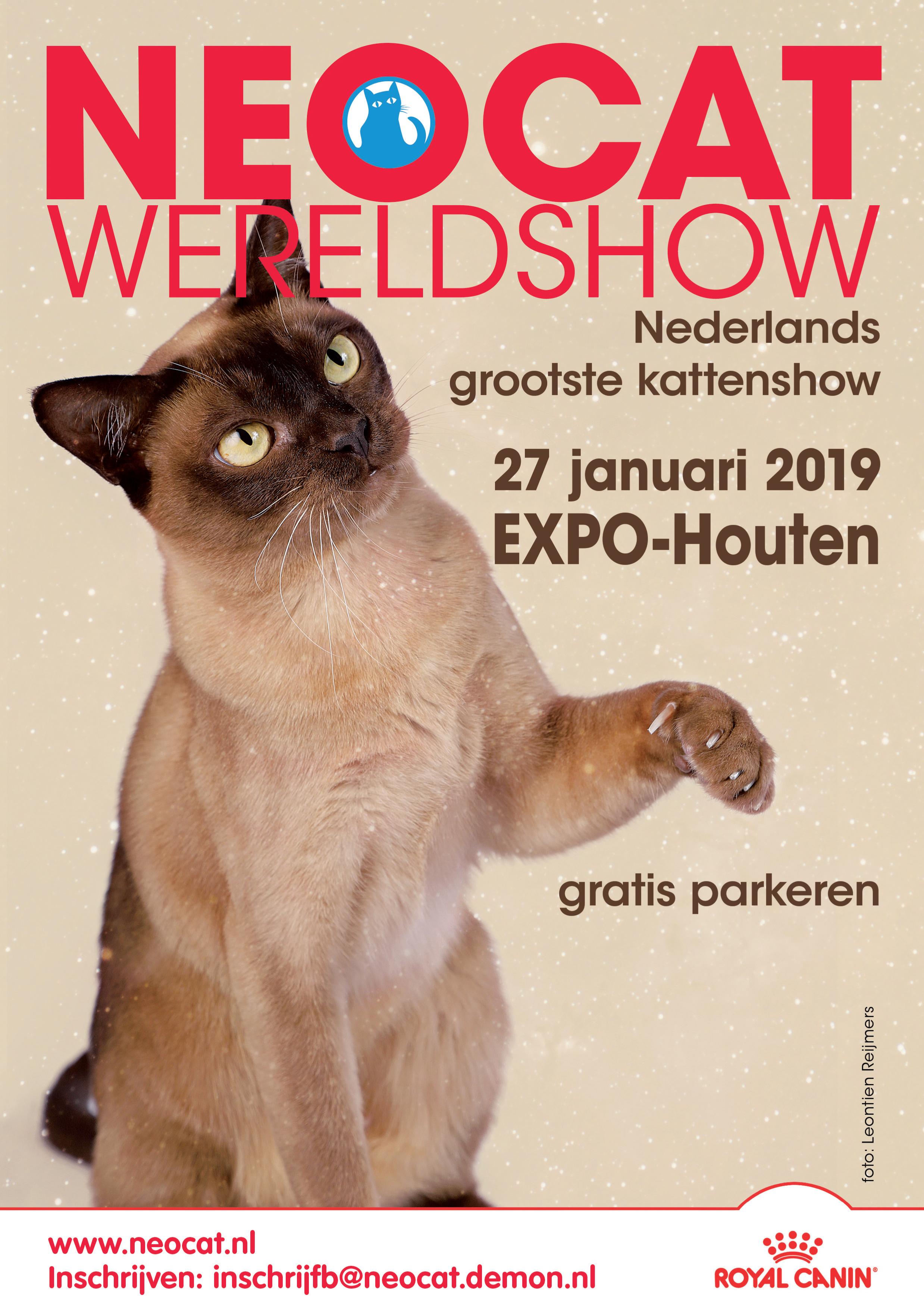 Kattenshow in Houten