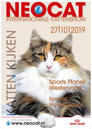 Kattenshow in Westervoort